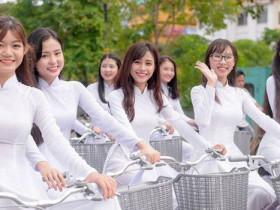 政府監督契約保證的越南新娘婚姻介紹